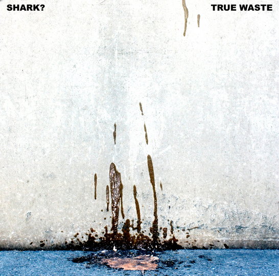 True Waste Shark?