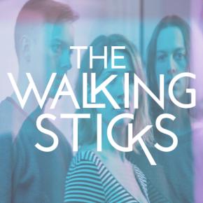The Walking Sticks - Name On It