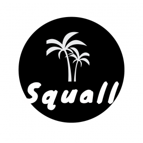 Squall connects musicians to social influencers to get your music heard