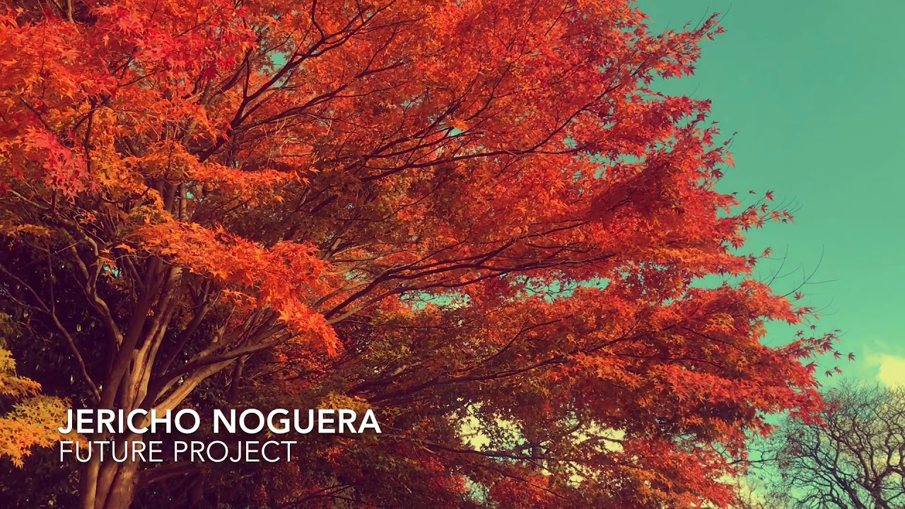 Jericho Noguera - Future Project