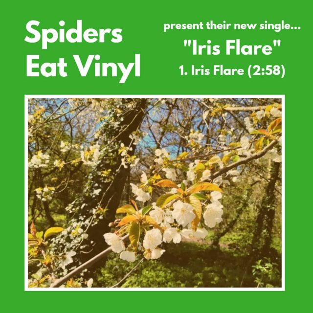 Spiders Eat Vinyl - Iris Flare